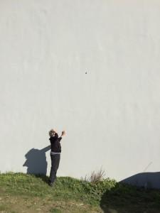 Flera gånger har vi nu sett sniglar klättra upp på väggen, undrar om dom också njuter av utsikten.