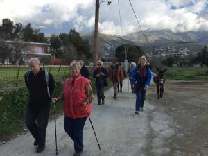 Happy Hikers ute på söndagspromenad 15 personer, tre hundar och en åsna (förutom Rolf).
